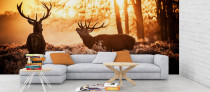 Two Deers in winter forest, nature wallpaper mural printing uk