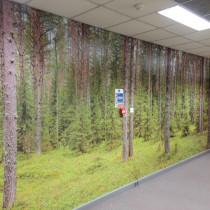 tree-wall