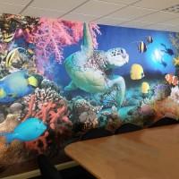 underwater wall mural