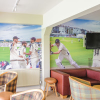 Custom Cricket Themed wallpaper mural