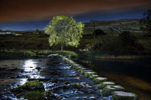 Bleezley Stepping stones Wallpaper mural