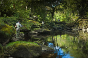 The Strid Fly fishing Wallpaper mural